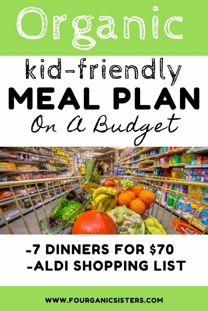 Fourganic Sisters Aldi Meal Plan for Kids