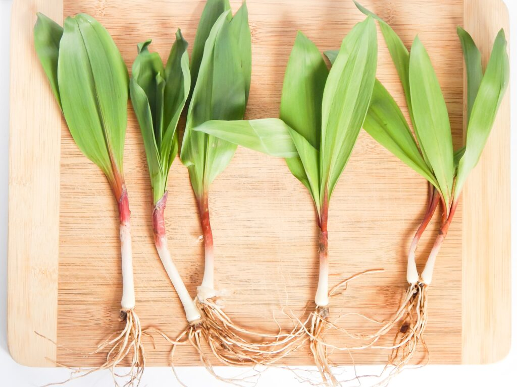 ramps in a row