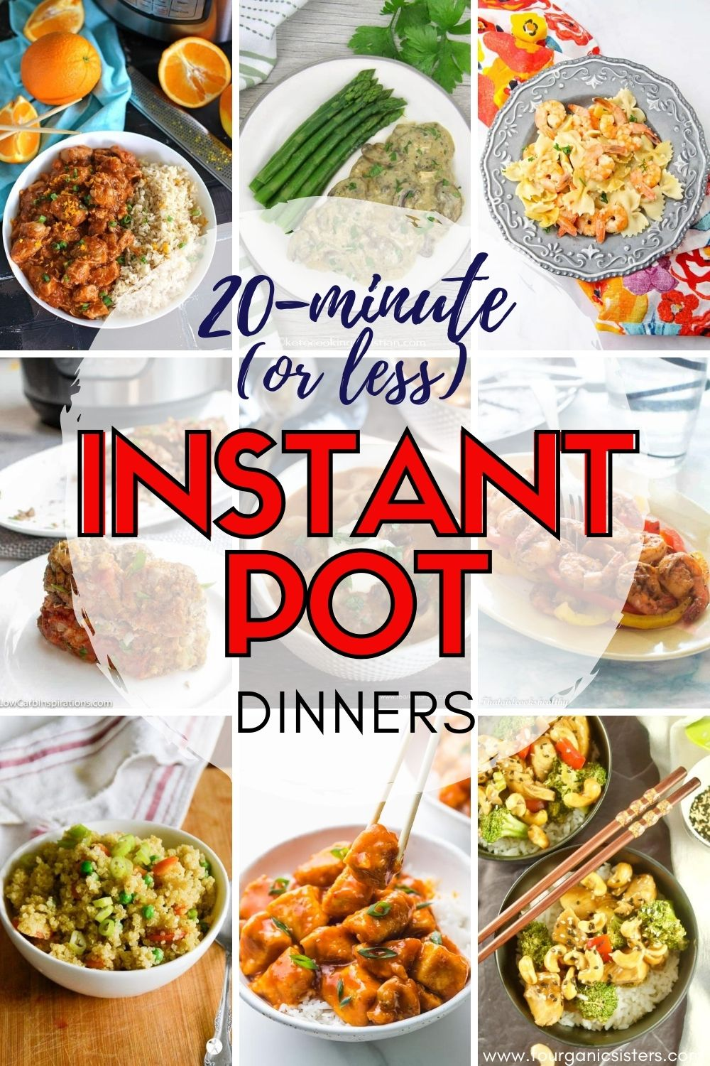 Quick Instant Pot Dinners | Fourganic Sisters